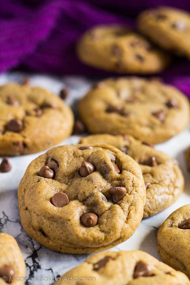 Chocolate Chip Pumpkin Cookies | marshasbakingaddiction.com @marshasbakeblog