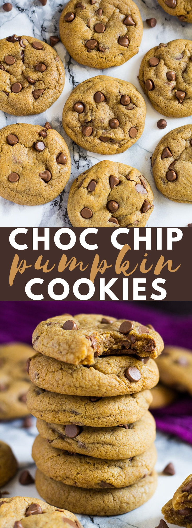 Chocolate Chip Pumpkin Cookies - These spiced pumpkin cookies are deliciously soft and chewy in the inside (without being cakey!), slightly crispy on the outside, and stuffed full of chocolate chips. No chilling required! #pumpkin #pumpkincookies #pumpkinrecipes #cookies #chocolatechipcookies #cookierecipes #autumn #fall