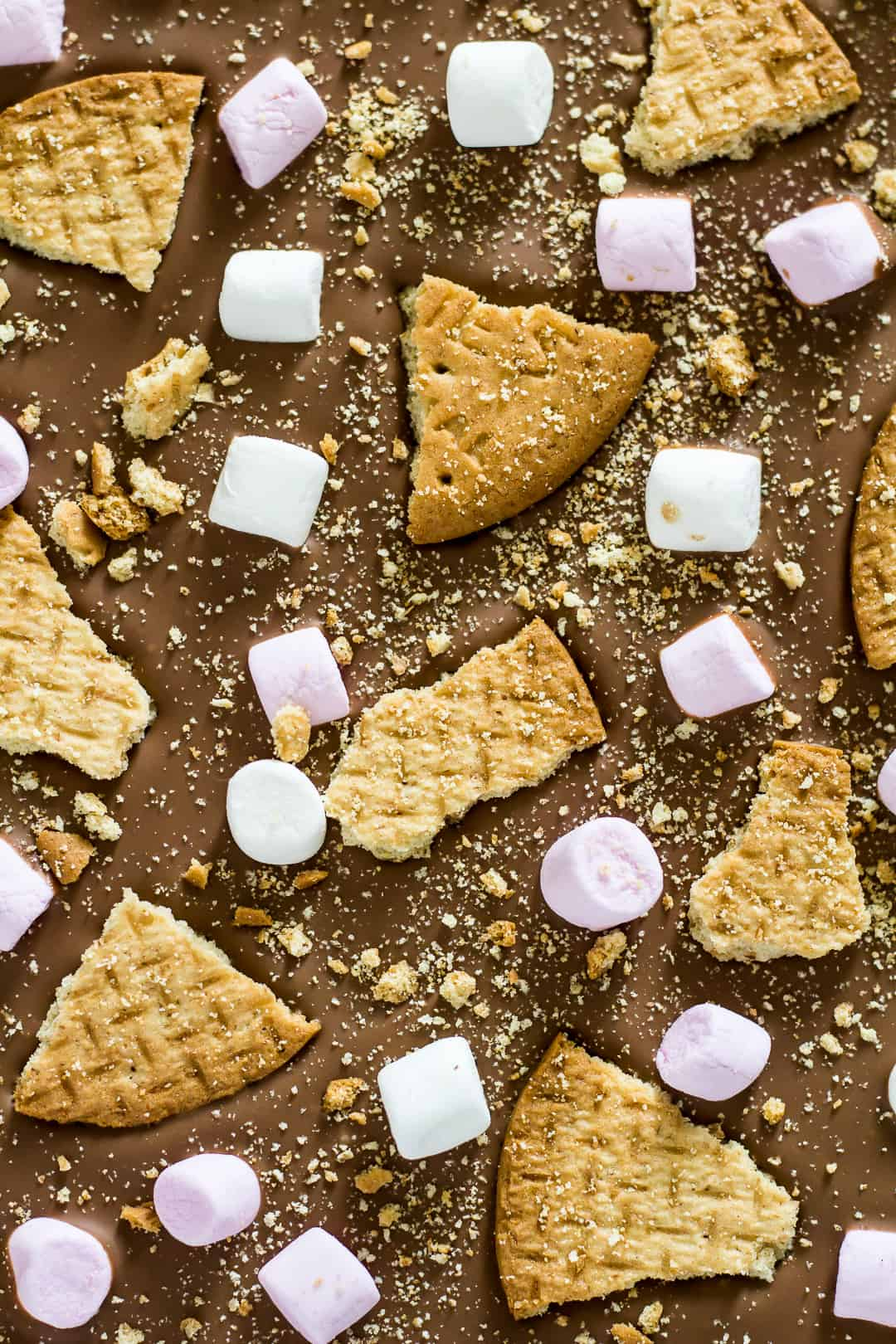 An overhead close-up shot of S'mores Chocolate Bark.